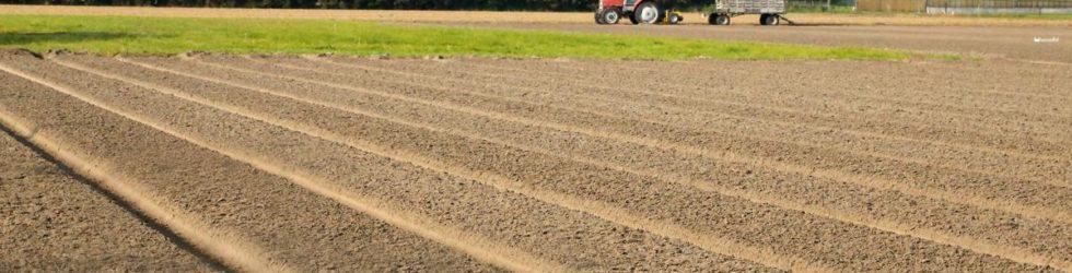 Uw grond verkopen? U kunt het beter in pacht uitgeven