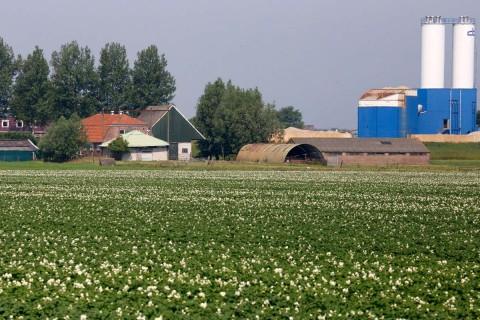 Zomer 2015 – agrarisch landschap