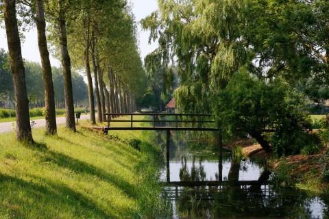 Zomer 2015 – Bomen en bruggetje
