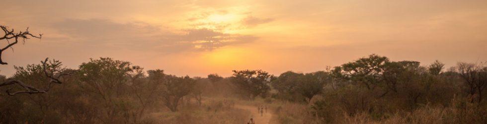 Africa Classic – Amref Flying Doctors